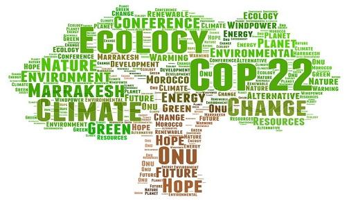 BM İKLİM DEĞİŞİKLİĞİ TARAFLAR KONFERANSI (COP 22) VE GENÇLER