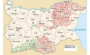 BULGARİSTAN'DA TÜRKLER VE SİYASİ LİDERLİK MÜCADELESİ